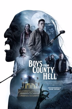 Boys From County Hell (Ireland) poster
