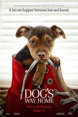 KS21: Dog's Way Home poster